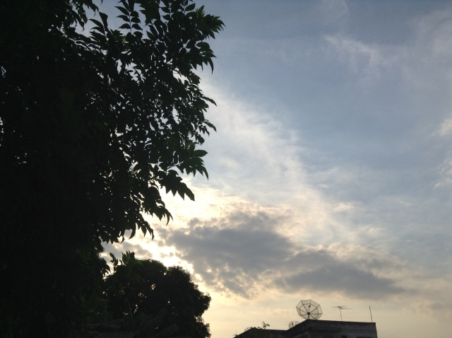 foto 5 (1)